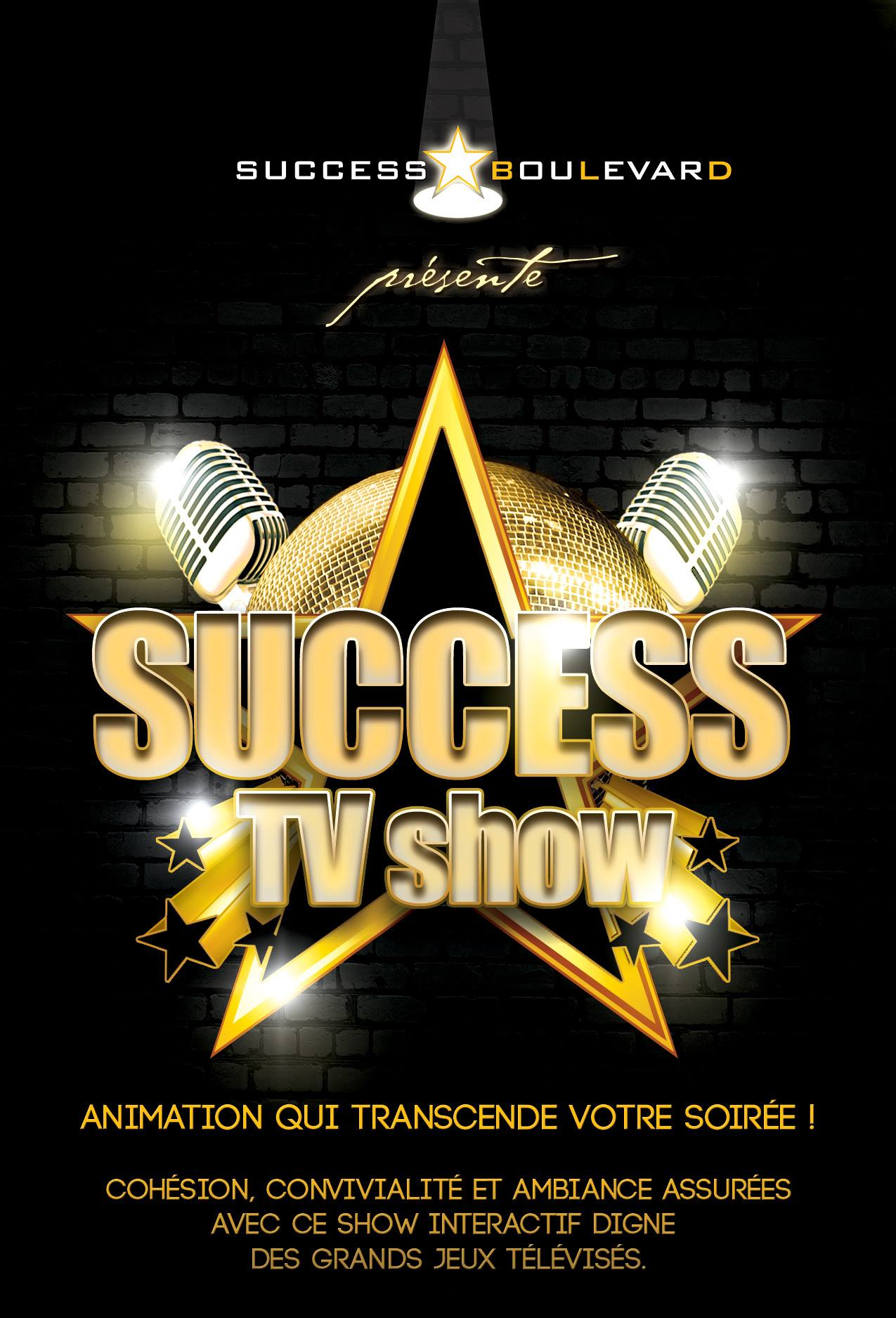 animation Success Boulevard Success TV Show